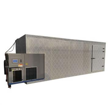 Double Door Tray Type Stainless Steel Food Dryer