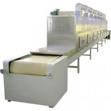 Stainless Steel Continuous Food Fruit Vegetable Chips Belt Mesh Dryer
