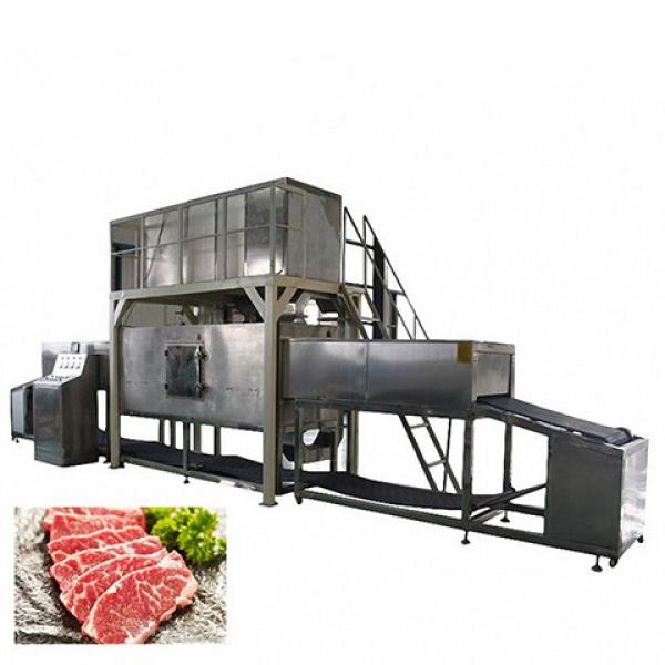Hot-Sale Beef Thawing Machine/Microwave Chicken Thawing Equipment for Sale #1 image