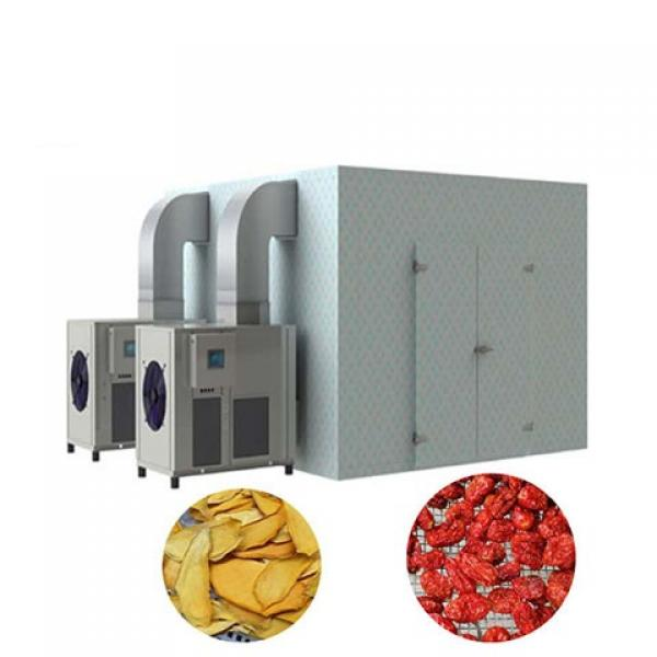 Drying Machine for Fruit Vegetable Food / Drying Equipment / Dehydrator #1 image