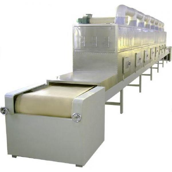 New Zealand Automati Cbd Hemp Dryer Mesh Belt Continuous Dryer #2 image